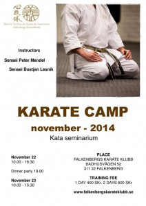 karatecamp.nov.pdf