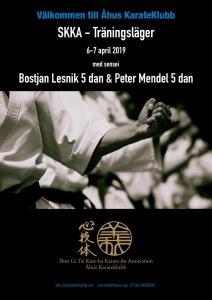 Karate seminarium Affisch Ahus_000001 (1)